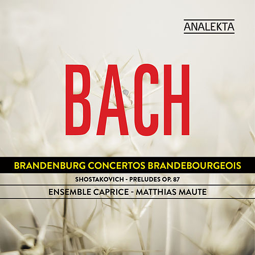 Play & Download Bach: Brandenburg Concertos - Shostakovich: Preludes Op. 87 by Ensemble Caprice | Napster