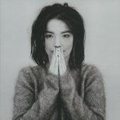 Debut von Björk