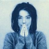 Venus As a Boy von Björk
