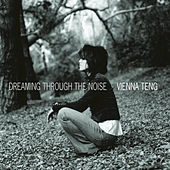 Play & Download Dreaming Through the Noise by Vienna Teng | Napster