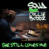Play & Download She Still Loves Me (feat. Collie Buddz) by Soja / Fleopard | Napster
