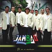 Play & Download Yo no se mañana by Jambao | Napster