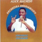 Play & Download Zvakanaka zvakadaro by Alick Macheso and Orchestra Mberikwazvo | Napster