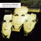 Play & Download Bringing Home The Ashes by The Wild Swans | Napster