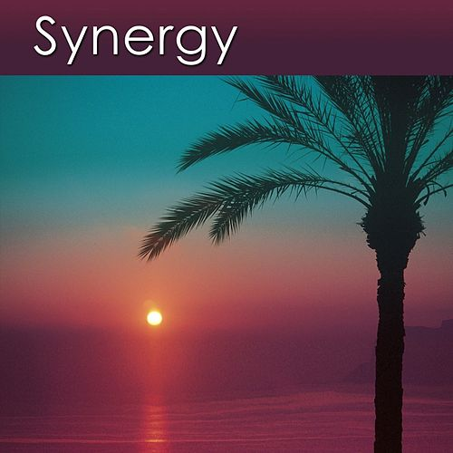 Play & Download Synergy (Relaxation Music for Your Health and Well-Being) by Dr. Harry Henshaw | Napster