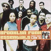 Play & Download Make 'em Like It by The Brooklyn Funk Essentials | Napster