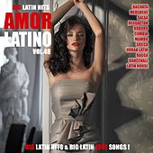 Amor Latino, Vol. 48 - 15 Big Latin Hits & Latin Love Songs (Bachata, Merengue, Salsa, Reggaeton, Kuduro, Mambo, Cumbia, Urbano, Ragga) by Various Artists