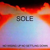 Play & Download No Wising up No Settling Down by Sole | Napster