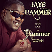 I Can Lay the Hammer Down by Jaye Hammer