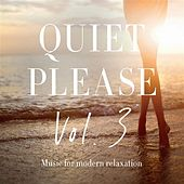 Quiet Please, Vol. 3: Music for Modern Relaxation by Various Artists