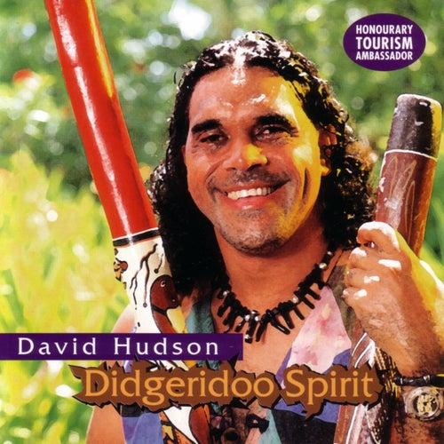 Didgeridoo Spirit by David Hudson