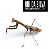 Praying Mantis by Rui Da Silva