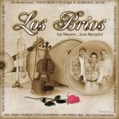 Play & Download Las Mejores... Con Mariachi by Los Brios | Napster