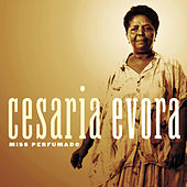 Play & Download Miss Perfumado by Cesaria Evora | Napster