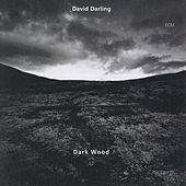 Dark Wood by David Darling