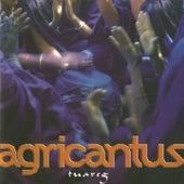 Tuareg von Agricantus