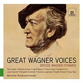Play & Download Great Wagner Voices by Various Artists | Napster