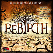Play & Download Rebirth by Various Artists | Napster