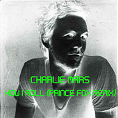 Play & Download How I Roll (Prince Fox Remix) by Charlie Mars | Napster