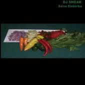 Play & Download Salsa Elektrika by DJ Sneak | Napster
