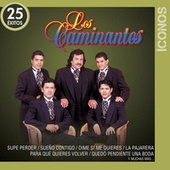 Íconos 25 Éxitos by Los Caminantes