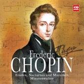Play & Download Frederic Chopin - Etüden, Nocturnes, Mazurken und Minutenwalzer by Otto Paul Riedel | Napster