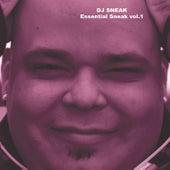 Play & Download Essential Sneak vol.1 by DJ Sneak | Napster