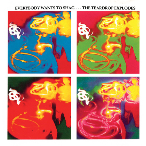 Play & Download Everybody Wants To Shag by The Teardrop Explodes | Napster