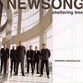 Play & Download Sheltering Tree by NewSong | Napster