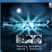 Play & Download Spark by Taufiq Qureshi | Napster