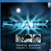 Spark by Taufiq Qureshi