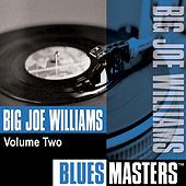 Play & Download Blues Masters, Vol. 2 by Big Joe Williams | Napster