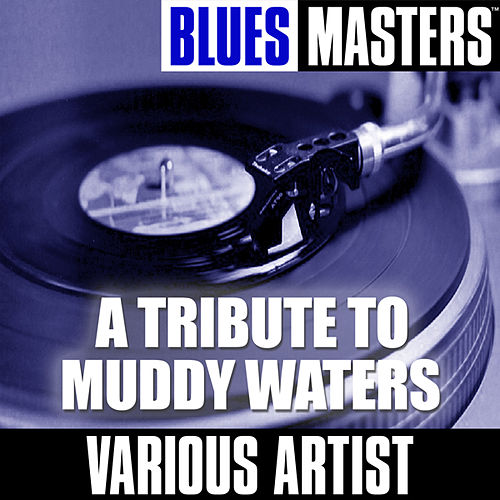 A Tribute To Muddy Waters von Various Artists