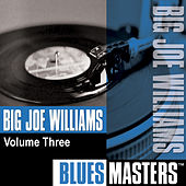 Play & Download Blues Masters, Vol. 3 by Big Joe Williams | Napster