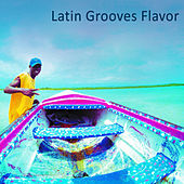 Play & Download Latin Grooves Flavor by Various Artists | Napster