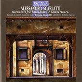 Scarlatti: Intermezzi fra Palandrana e Zamberlucco von Barbara di Castri