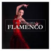 20 Éxitos del Flamenco by Various Artists