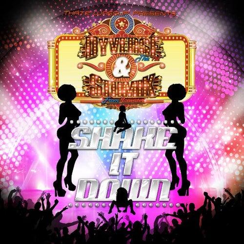 Shake It Down (feat. Dyverse the 1st) by Stumik