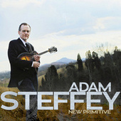 Play & Download New Primitive by Adam Steffey | Napster
