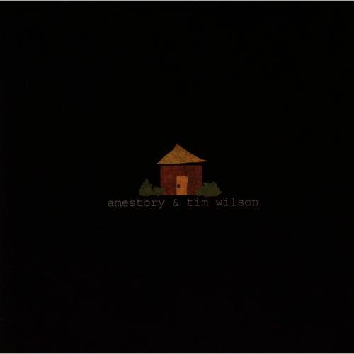 Play & Download Amestory & Tim Wilson by Tim Wilson | Napster