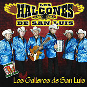 Play & Download Los Galleros de San Luis by Los Halcones De San Luis | Napster