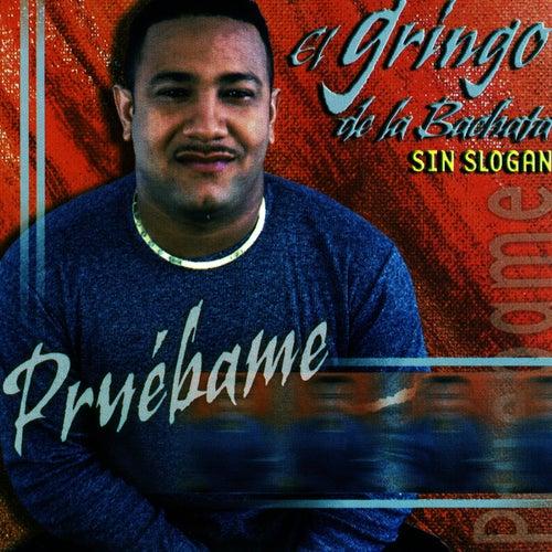 Play & Download Pruebame by El Gringo De La Bachata | Napster