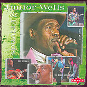Play & Download Junior Wells & Friends by Various Artists | Napster