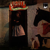 Just Another Diamond Day by Vashti Bunyan