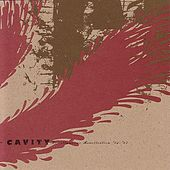 Miscellaneous Recollections 92-97 by Cavity