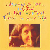 Now Is The Happiest Time Of Your Life by Daevid Allen