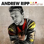 Won't Let Go by Andrew Ripp