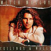 Ceilings and Walls by Mitch Malloy
