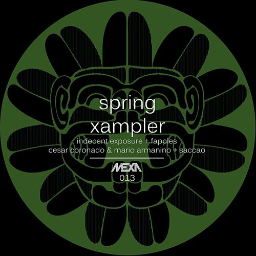 Play & Download Spring Xampler by Various Artists | Napster