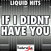 If I Didn't Have You - a Tribute to Thompson Square by Liquid Hits